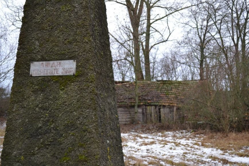 Как вымирает Черниговщина (фоторепортаж) (фото) - фото 6