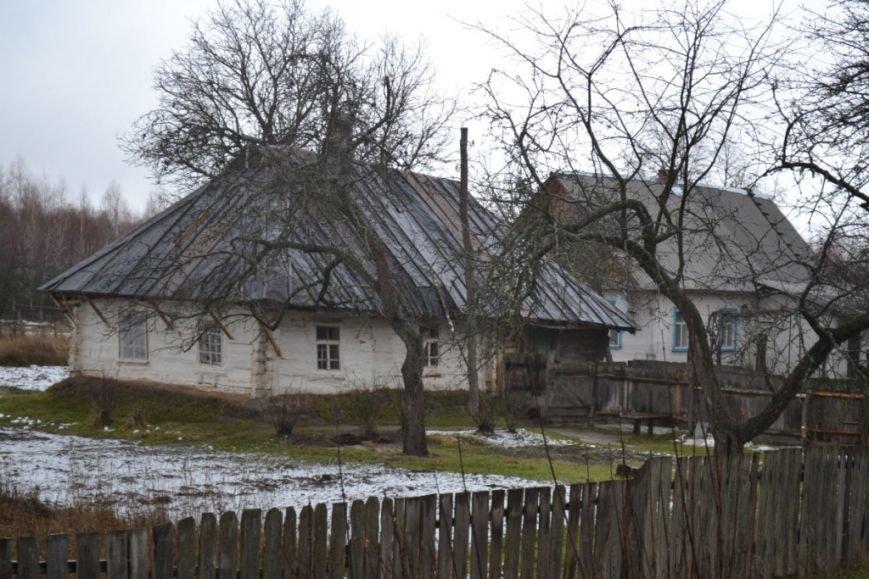 Как вымирает Черниговщина (фоторепортаж) (фото) - фото 10