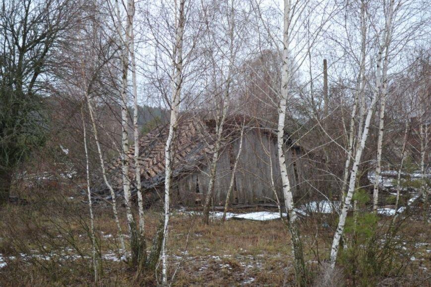 Как вымирает Черниговщина (фоторепортаж) (фото) - фото 13