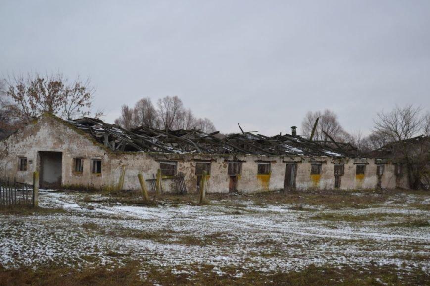 Как вымирает Черниговщина (фоторепортаж) (фото) - фото 12