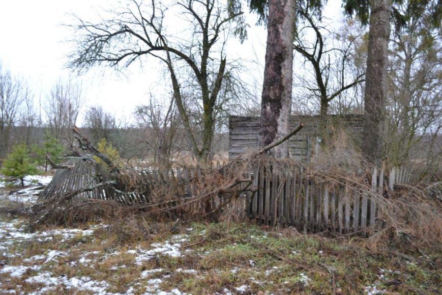 Как вымирает Черниговщина (фоторепортаж) (фото) - фото 1