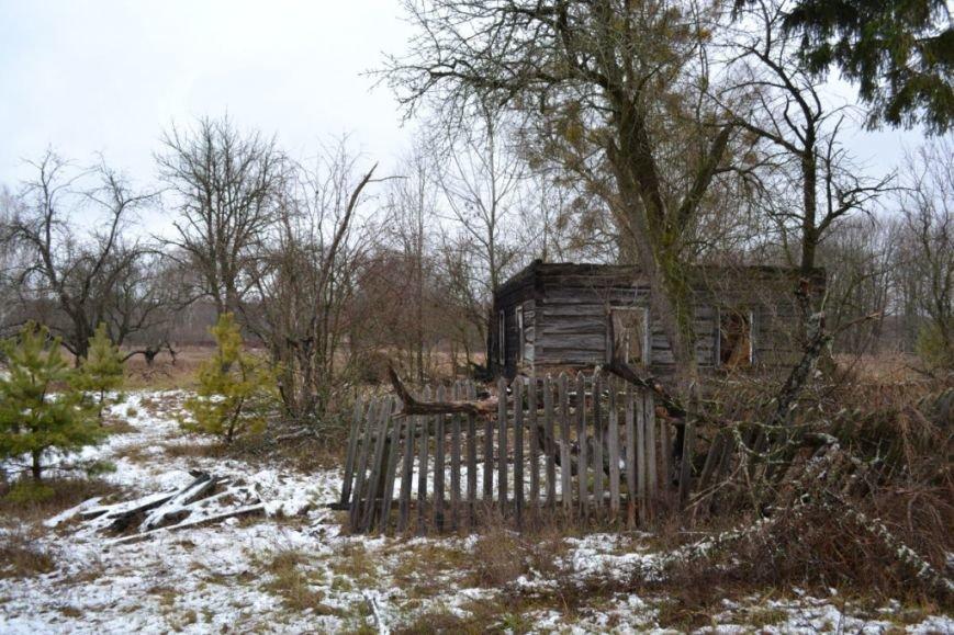 Как вымирает Черниговщина (фоторепортаж) (фото) - фото 4