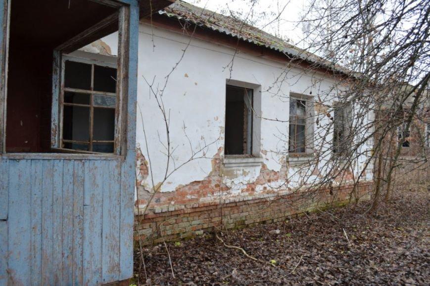 Как вымирает Черниговщина (фоторепортаж) (фото) - фото 21