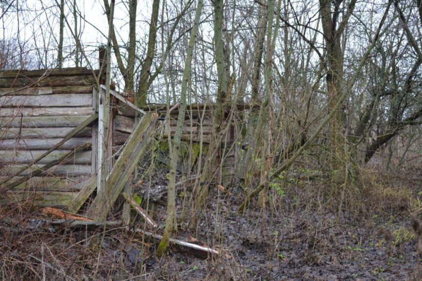 Как вымирает Черниговщина (фоторепортаж) (фото) - фото 17