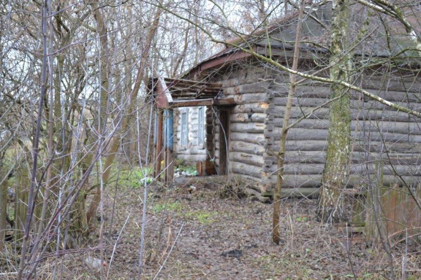Как вымирает Черниговщина (фоторепортаж) (фото) - фото 20