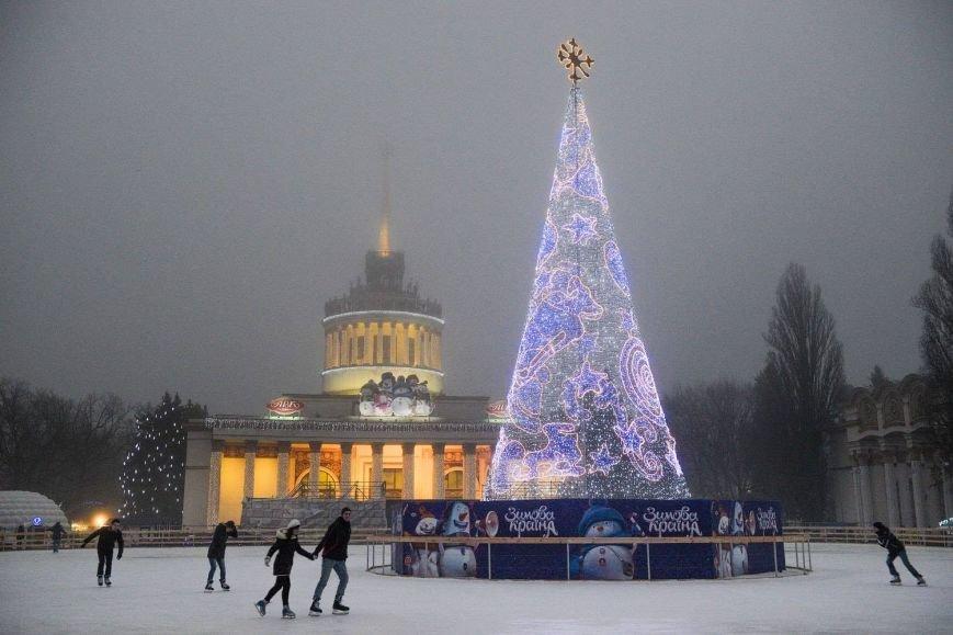 елка невидимая, Киев