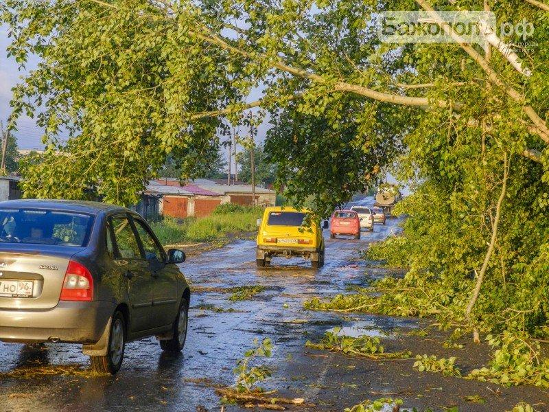 06_В Северском после урагана, 12 Июля 2015