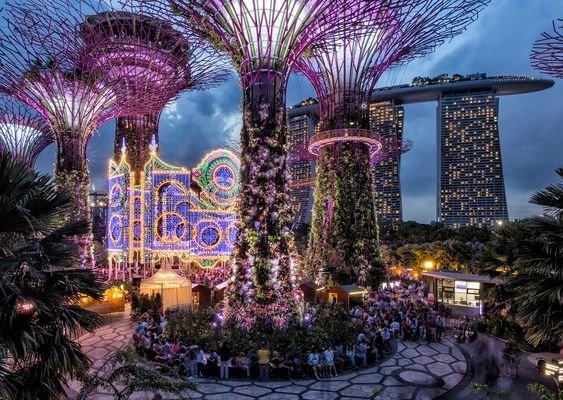 Приголомшливі новорічні сади (Фото) (фото) - фото 1