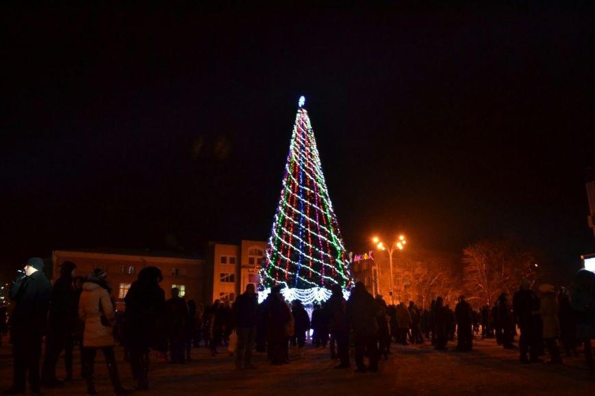 Новогодняя ночь в Кременчуге: 1500 кременчужан встретили новый год у главной елки города (ФОТО) (фото) - фото 1