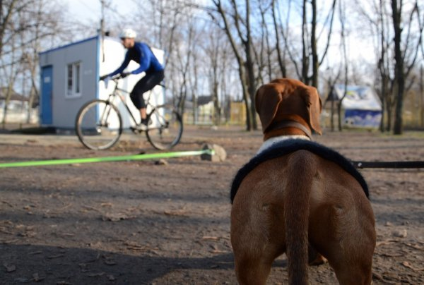 В Днепропетровске боролись с зимним унынием и ленью (ФОТО) (фото) - фото 5