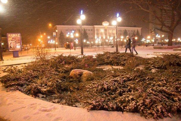 Зимний Бердянск (фото) - фото 4