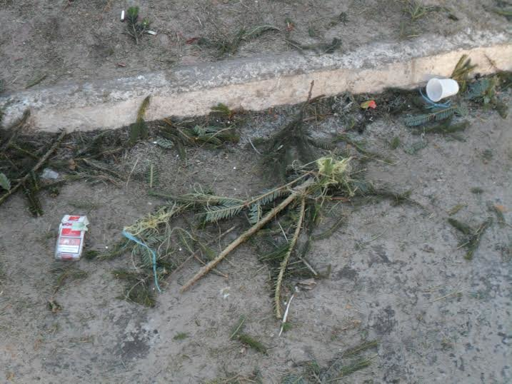 Продавці ялинок перетворили Привокзальну площу на смітник (ФОТО), фото-2
