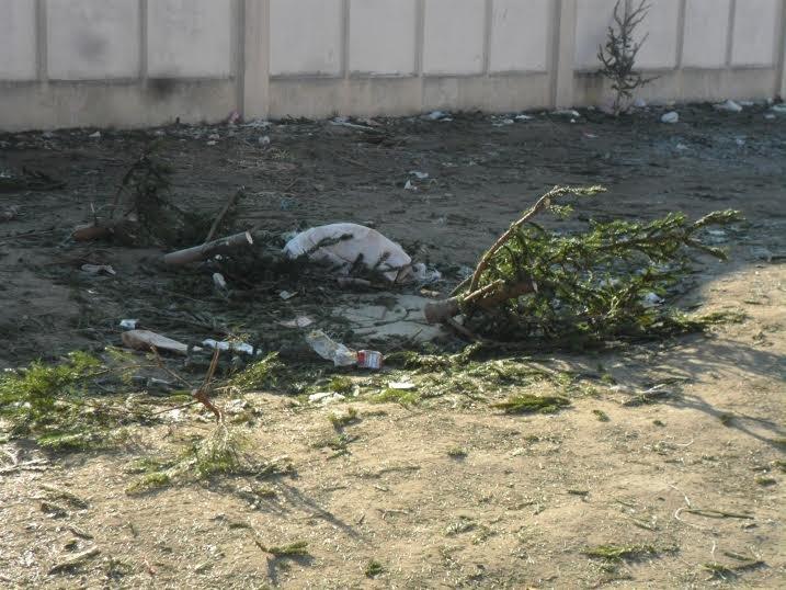 Продавці ялинок перетворили Привокзальну площу на смітник (ФОТО), фото-3