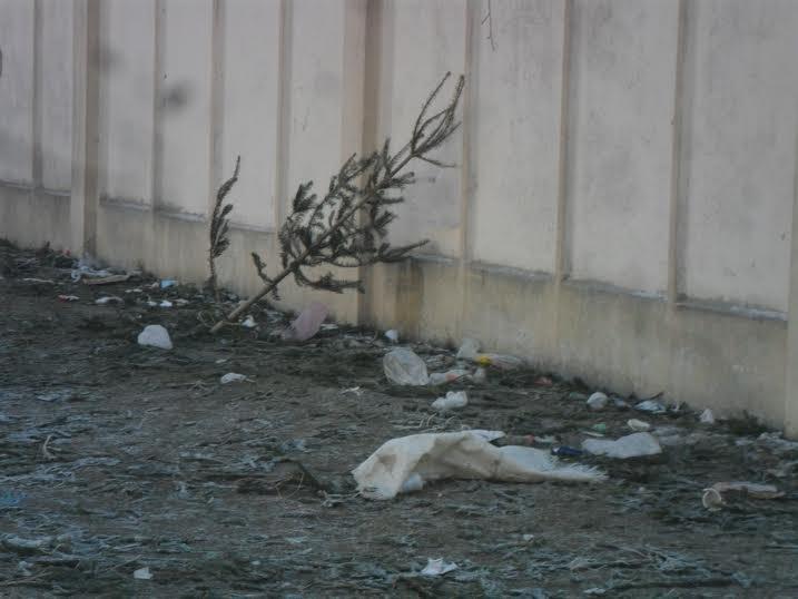 Продавці ялинок перетворили Привокзальну площу на смітник (ФОТО), фото-4