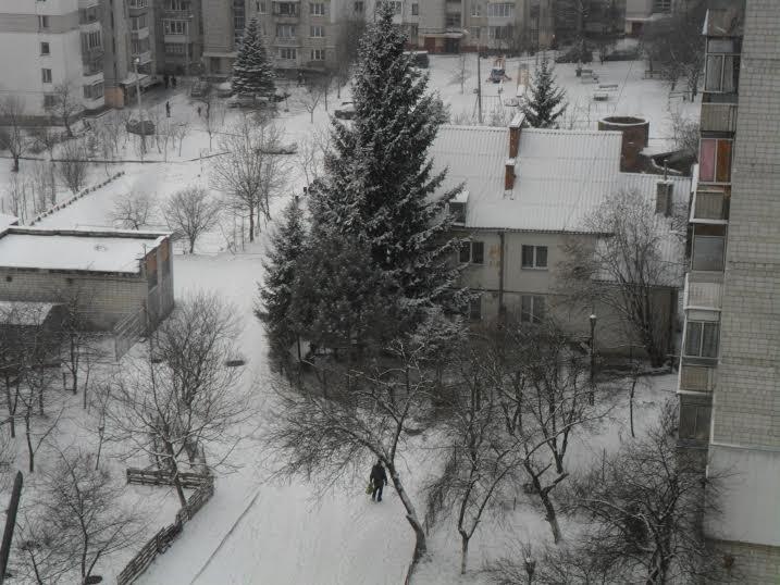 До Львова нарешті завітала справжня зима (ФОТОРЕПОРТАЖ), фото-4