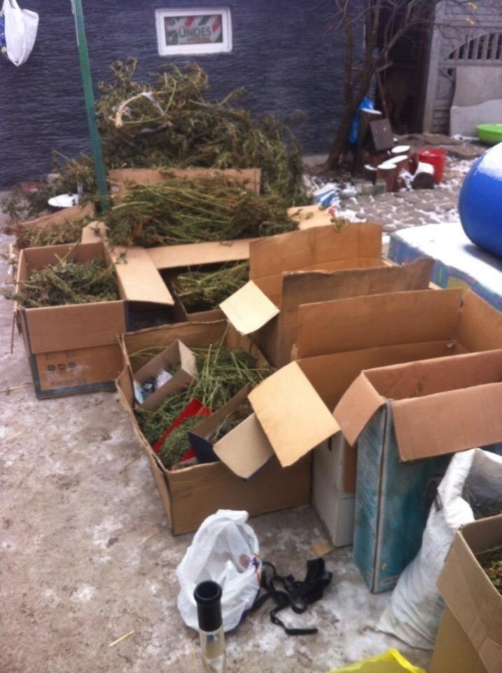Днепропетровские СБУшники поймали на Рождество крупных наркоторговцев (ФОТО) (фото) - фото 3
