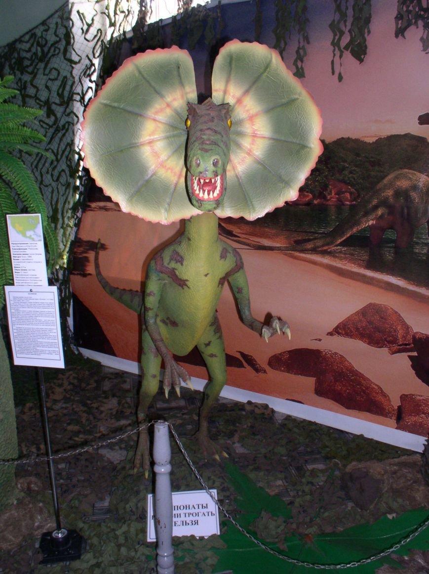 Саркозавры, динозавры и другие доисторические рептилии на выставке в Витебске (фото) - фото 3