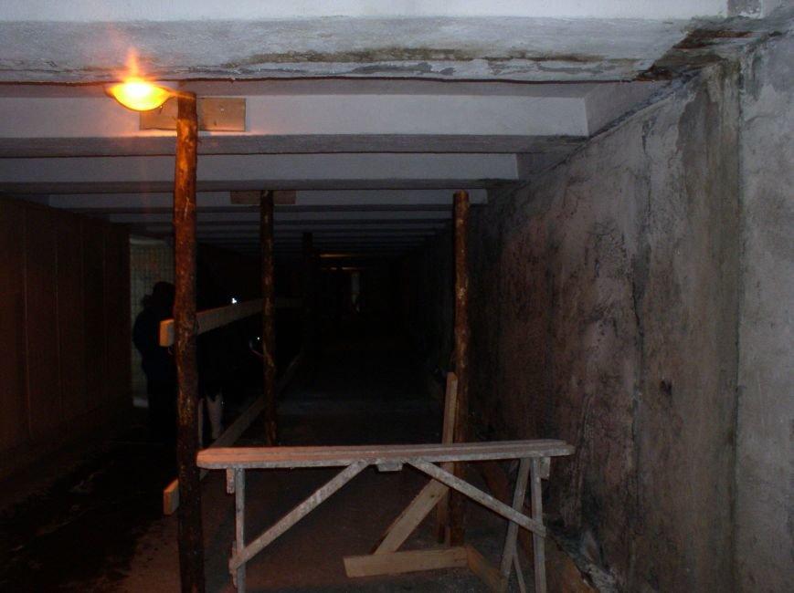 В районе недействующего подземного перехода в Витебске пешеходы нарушают ПДД (фото) - фото 4
