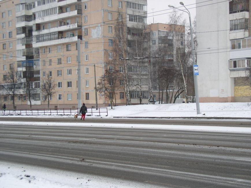 В районе недействующего подземного перехода в Витебске пешеходы нарушают ПДД (фото) - фото 3