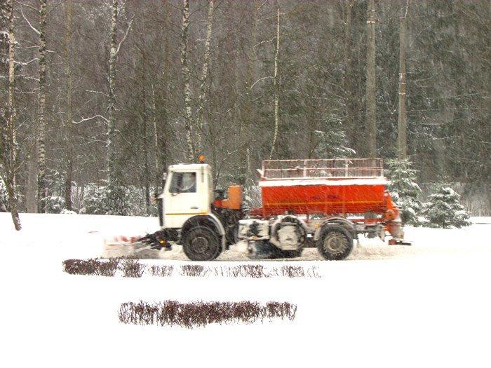 В Полоцк и Новополоцк пришел циклон Daniella: снег будет усиливаться в течение дня (фото) - фото 5