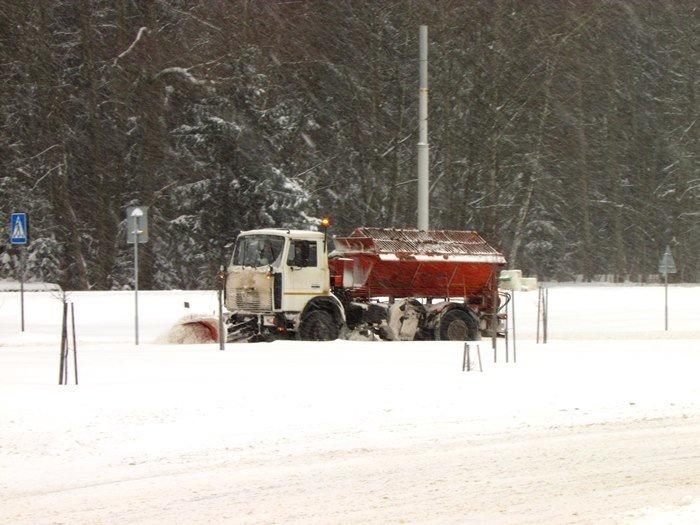 В Полоцк и Новополоцк пришел циклон Daniella: снег будет усиливаться в течение дня (фото) - фото 3