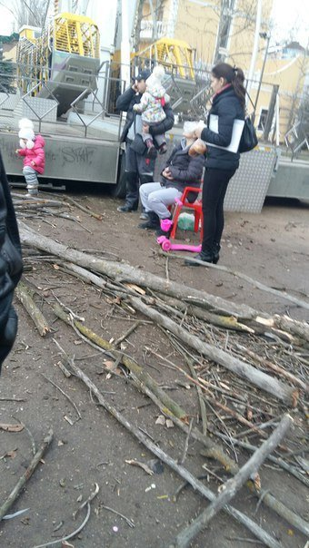 В Симферополе сухое дерево упало на женщину с коляской, - очевидцы (ФОТО) (фото) - фото 3