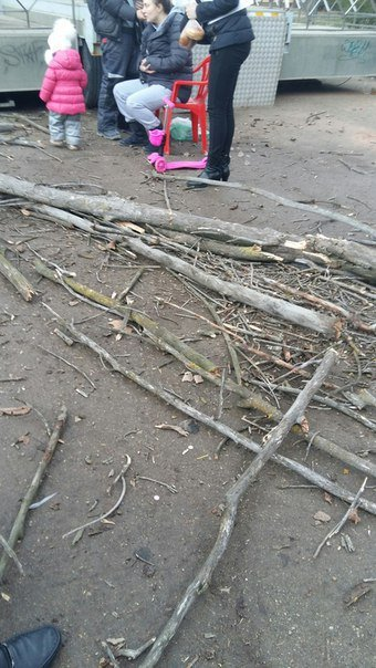 В Симферополе сухое дерево упало на женщину с коляской, - очевидцы (ФОТО) (фото) - фото 2