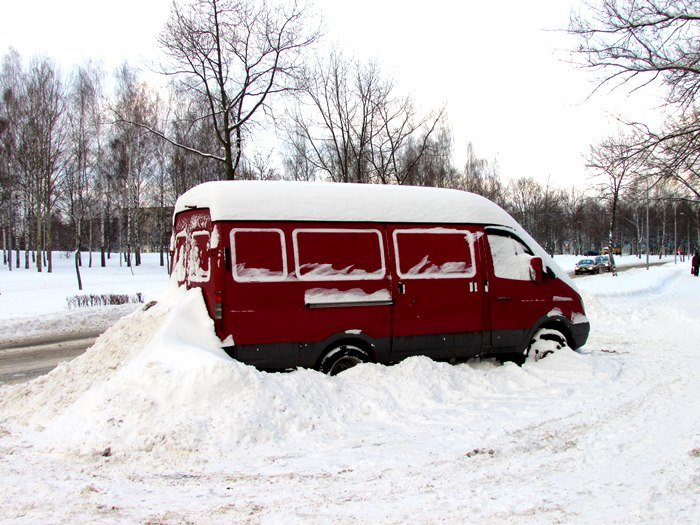 (не готов) Как в Новополоцке справляются с последствиями циклона Daniella (фото) - фото 2