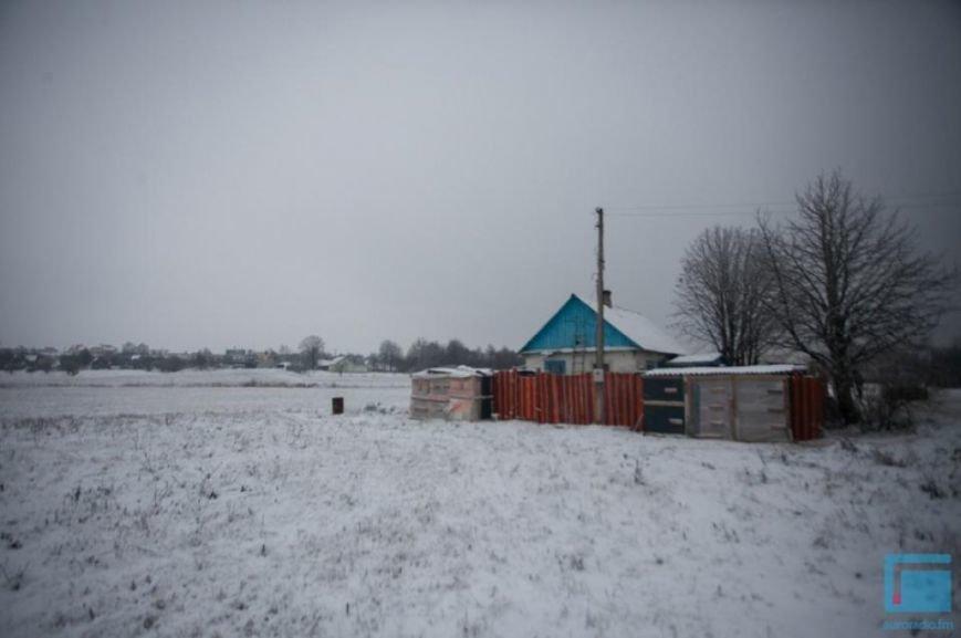 Как выживает в зимний период приют для собак на окраине Гродно (фоторепортаж) (фото) - фото 18