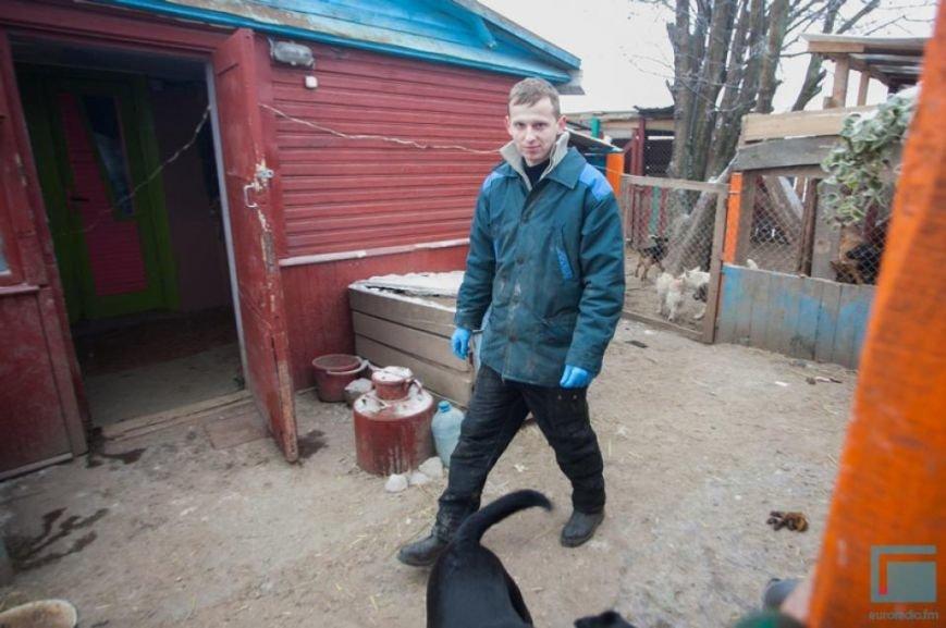 Как выживает в зимний период приют для собак на окраине Гродно (фоторепортаж) (фото) - фото 1