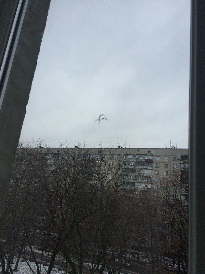 В Харькове неизвестные обстреляли школу (ФОТО) (фото) - фото 1