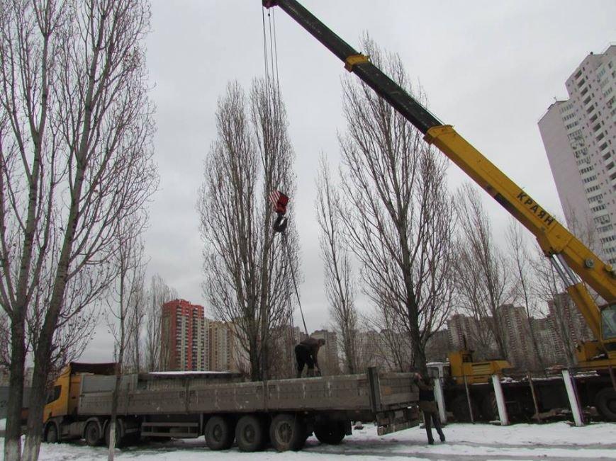 В Киеве возобновилось строительство моста через озеро Жандарка (ФОТО), фото-3