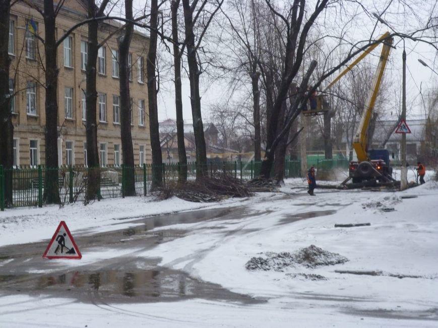 Снег опиловке деревьев в Красноармейске не помеха (фото) - фото 1