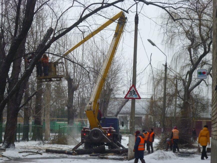 Снег опиловке деревьев в Красноармейске не помеха (фото) - фото 4