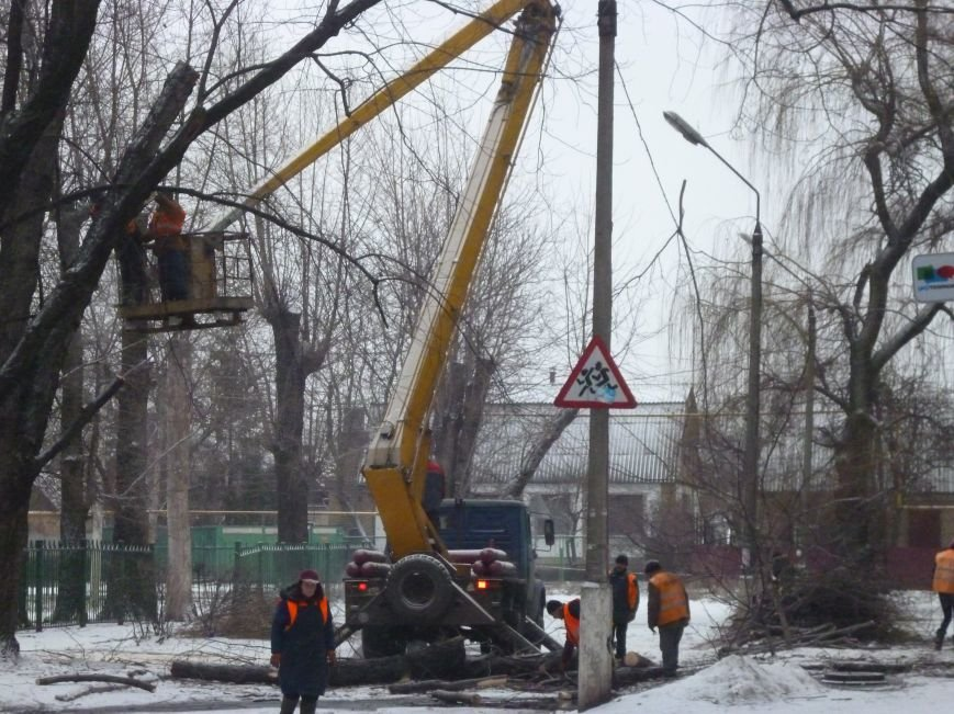 Снег опиловке деревьев в Красноармейске не помеха (фото) - фото 2
