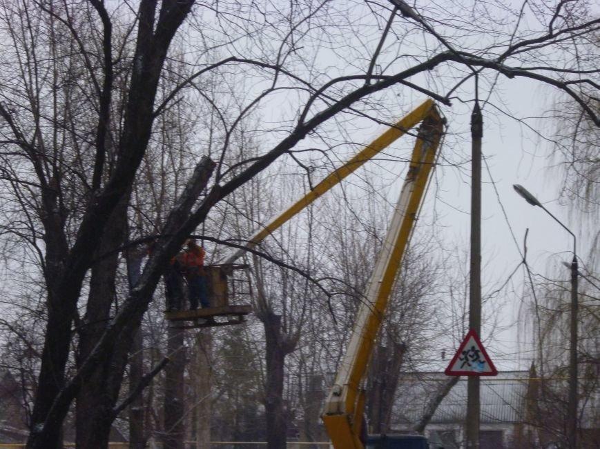Снег опиловке деревьев в Красноармейске не помеха (фото) - фото 3