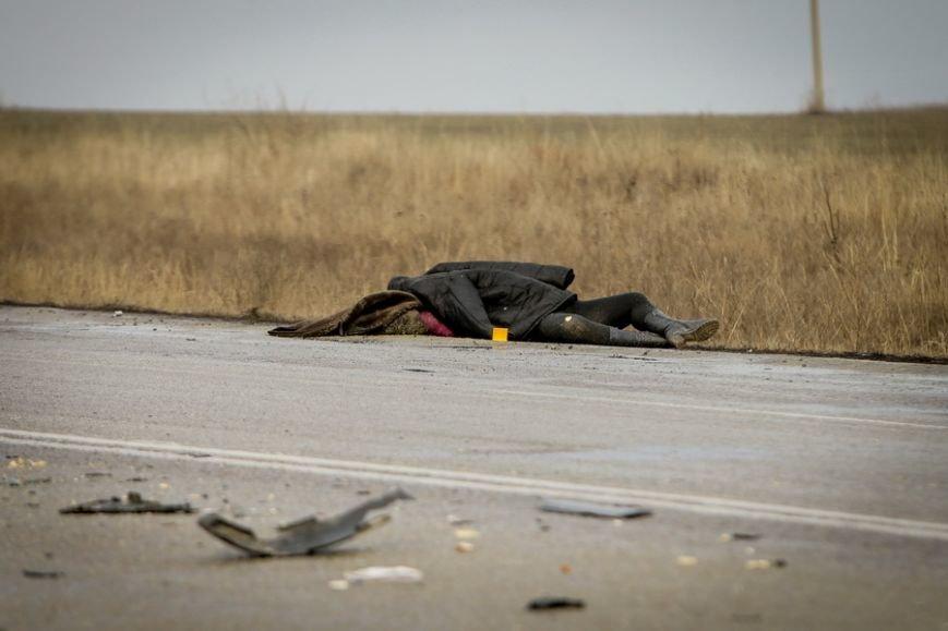 Под Запорожьем произошла смертельная авария, - ФОТО 18+ (фото) - фото 1