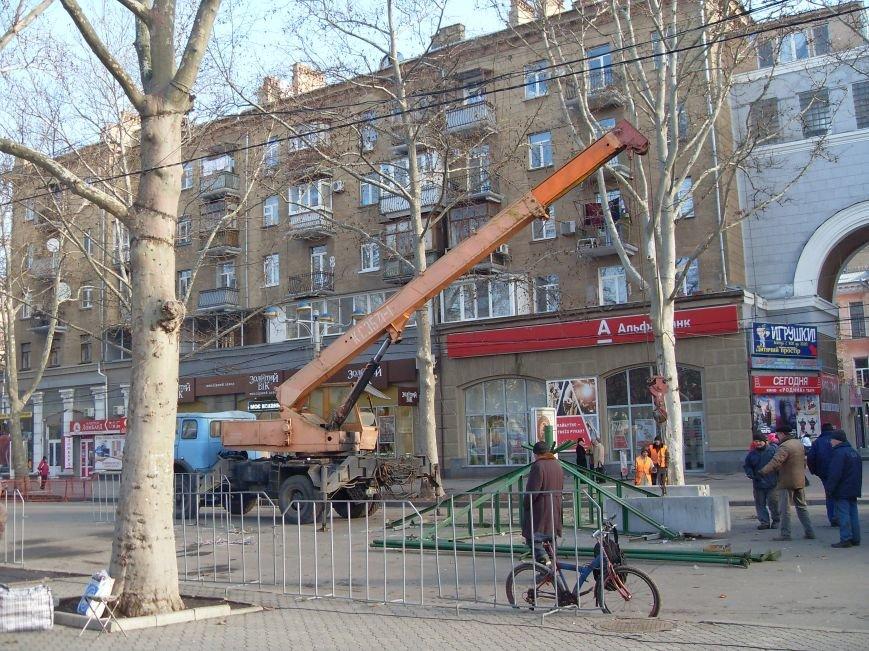 Праздники закончились: в Николаеве демонтировали главную елку города (ФОТОФАКТ) (фото) - фото 1