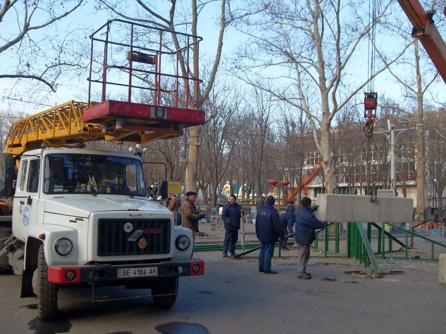 Праздники закончились: в Николаеве демонтировали главную елку города (ФОТОФАКТ) (фото) - фото 3