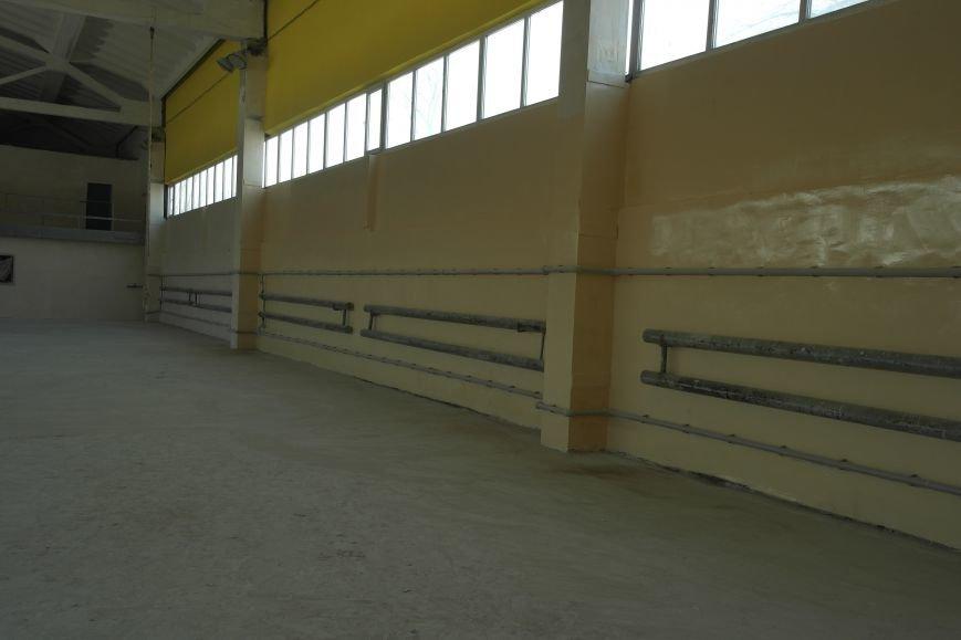 Черные дыры Красноармейска: куда исчез миллион на ремонт спорткомплекса?, фото-2