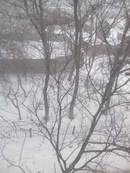 Как криворожане добирались на работу по заметенным снегом дорогам (ФОТО) (фото) - фото 2