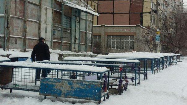 Днепропетровск после снегопада: транспорт работает без сбоев, тротуары посыпаны (ФОТО) (фото) - фото 2