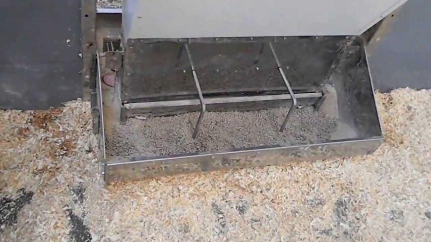 Оборудование для свиней (фото) - фото 1
