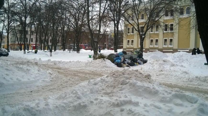 Полтавчане сетуют на переполненные мусорные баки (ФОТОФАКТ) (фото) - фото 2