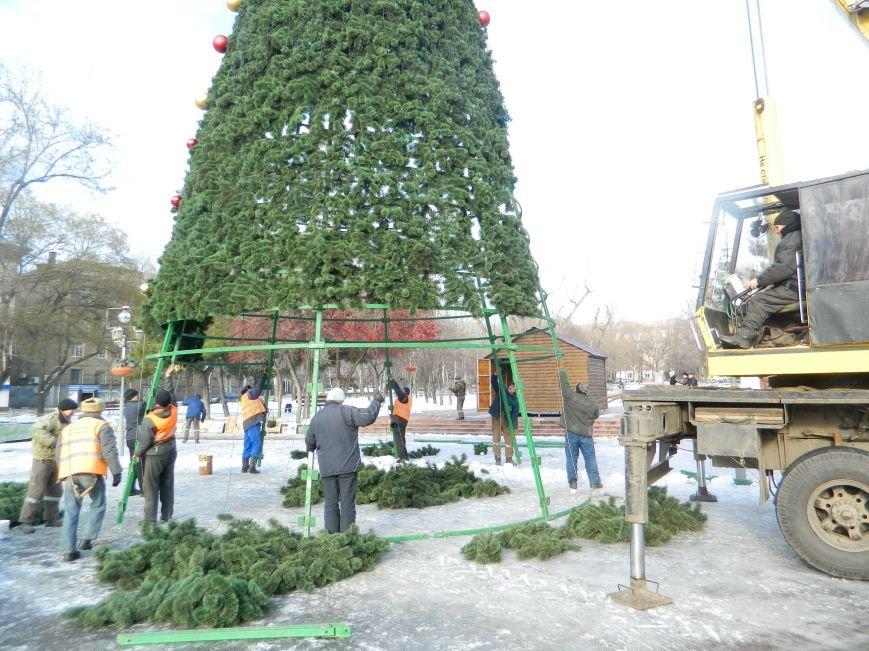 С главных площадей Запорожья убирают городские елки, - ФОТОРЕПОРТАЖ (фото) - фото 9