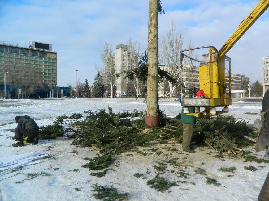 С главных площадей Запорожья убирают городские елки, - ФОТОРЕПОРТАЖ (фото) - фото 5