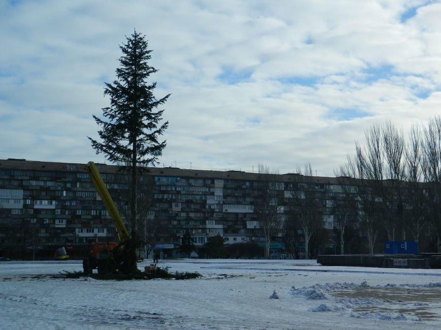 С главных площадей Запорожья убирают городские елки, - ФОТОРЕПОРТАЖ (фото) - фото 1
