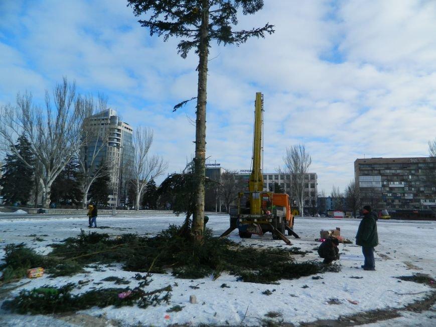 С главных площадей Запорожья убирают городские елки, - ФОТОРЕПОРТАЖ (фото) - фото 6