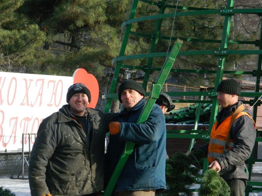 С главных площадей Запорожья убирают городские елки, - ФОТОРЕПОРТАЖ (фото) - фото 11