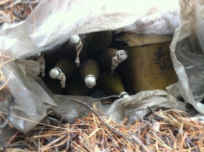 В Станично-Луганском районе найден тайник с военными средствами поражения (ФОТО) (фото) - фото 2